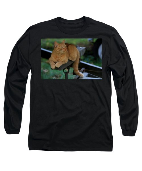 5-toe'd Orange Cat Of The Marina Long Sleeve T-Shirt