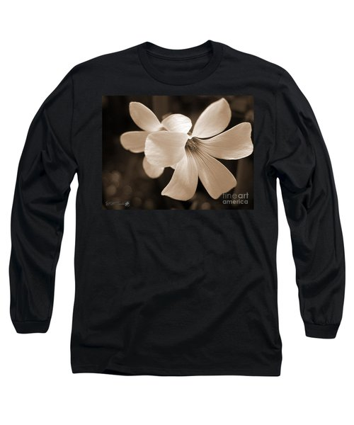 Oxalis Triangularis Or Burgundy Shamrock Long Sleeve T-Shirt by J McCombie