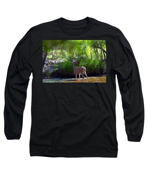 A Buck Feeding Long Sleeve T-Shirt by Brian Williamson