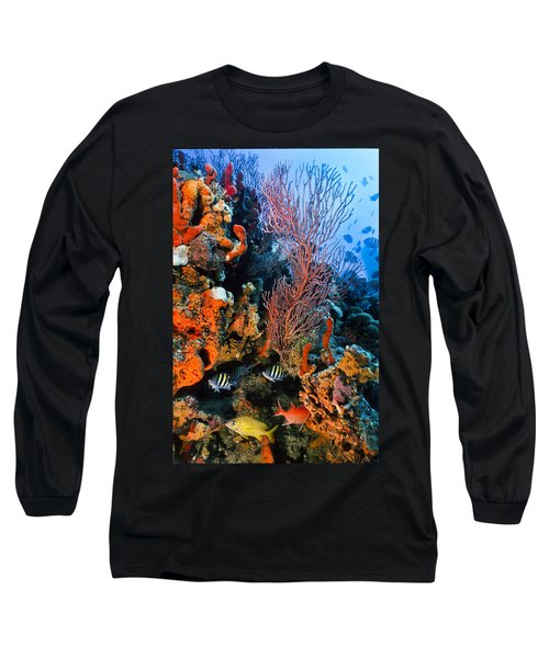A Colorful Ledge Long Sleeve T-Shirt