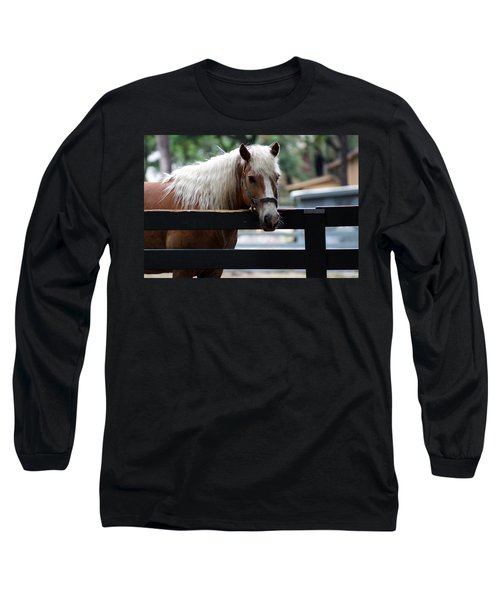 A Hilton Head Island Horse Long Sleeve T-Shirt