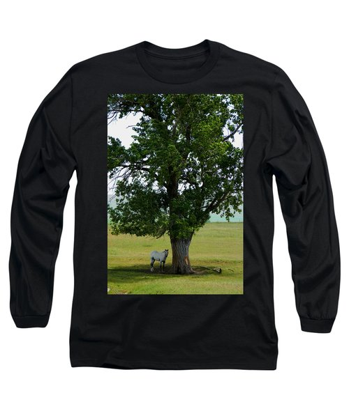 A One Horse Tree And Its Horse					 Long Sleeve T-Shirt