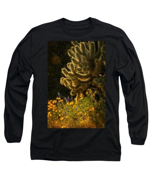 A Southwestern Spring  Long Sleeve T-Shirt