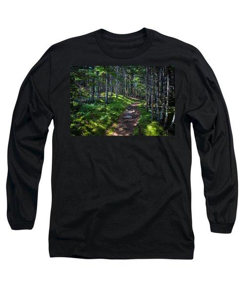 A Walk In The Woods Long Sleeve T-Shirt by John Haldane