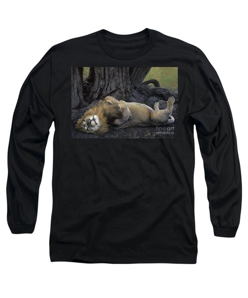 African Lion Panthera Leo Wild Kenya Long Sleeve T-Shirt by Dave Welling