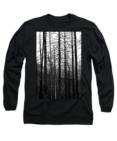 After The Fire Long Sleeve T-Shirt by Joe Kozlowski