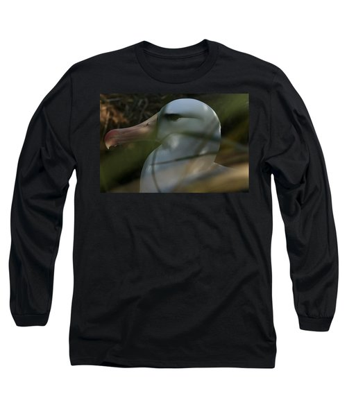 Long Sleeve T-Shirt featuring the photograph Albatross by Amanda Stadther