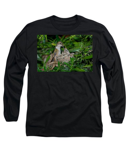 Allens Hummingbird Feeds Young Long Sleeve T-Shirt