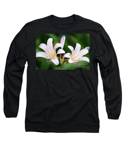 Amaryllis Belladonna Naked Ladies Long Sleeve T-Shirt by PainterArtist FIN