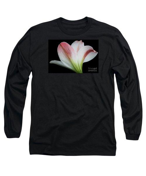 Amaryllis Long Sleeve T-Shirt by Judy Whitton