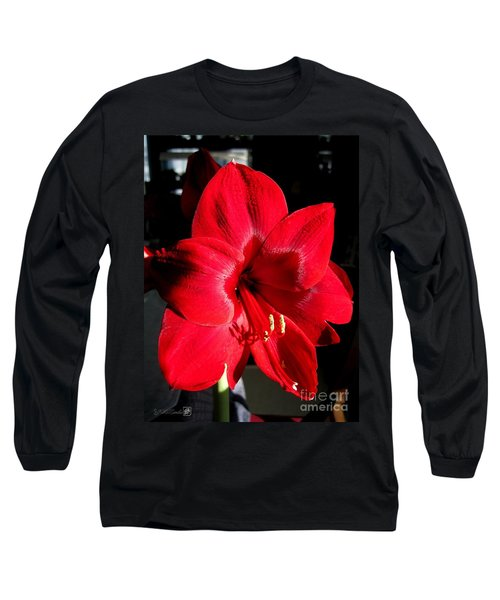 Amaryllis Named Black Pearl Long Sleeve T-Shirt by J McCombie