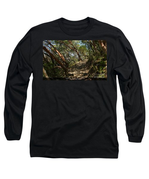 Among The Madrone Long Sleeve T-Shirt
