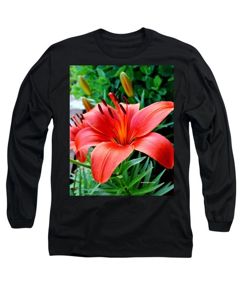 Andrea's Lily Long Sleeve T-Shirt