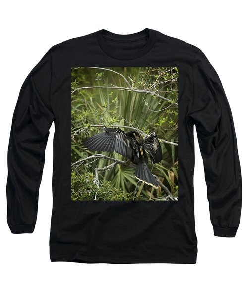 Anhinga Papa Long Sleeve T-Shirt by Phill Doherty