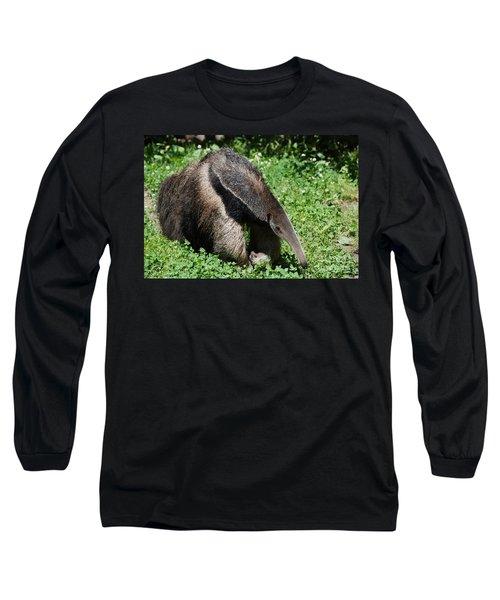 Anteater Long Sleeve T-Shirt by DejaVu Designs