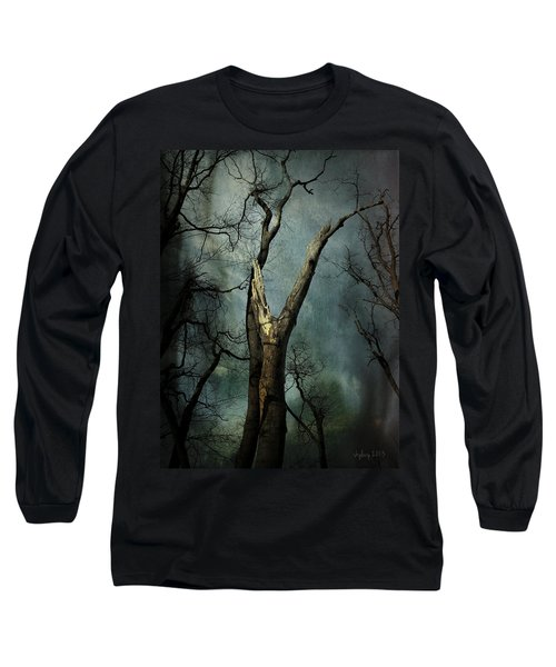 Appeal To The Sky Long Sleeve T-Shirt by Cynthia Lassiter