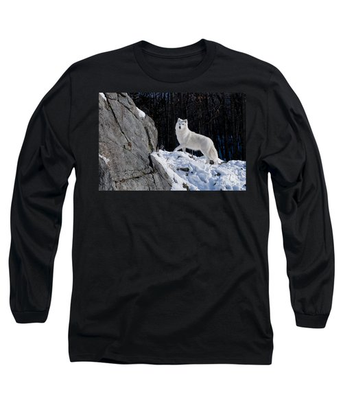 Long Sleeve T-Shirt featuring the photograph Arctic Wolf On Rock Cliff by Wolves Only