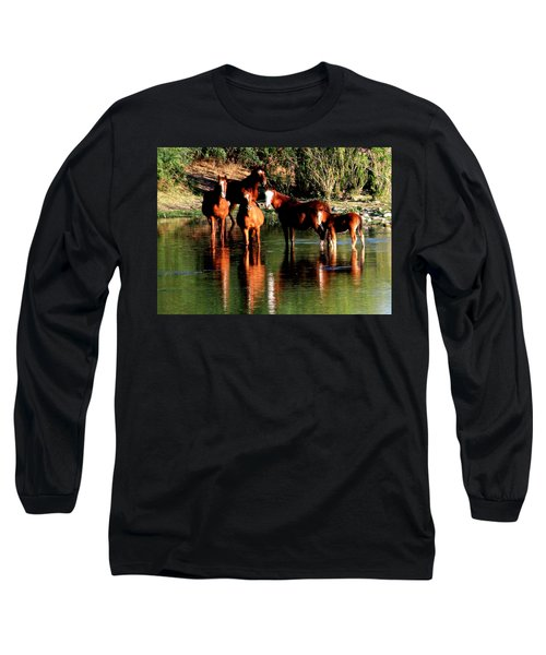 Arizona Wild Horses Long Sleeve T-Shirt