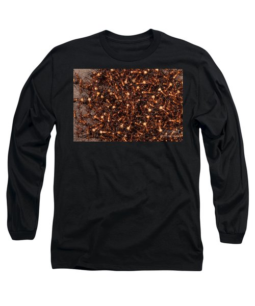 Army Ants Long Sleeve T-Shirt by Art Wolfe