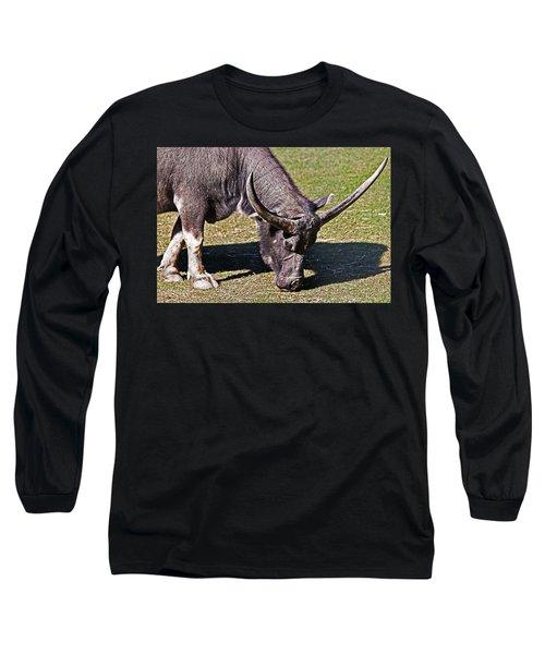 Asian Water Buffalo  Long Sleeve T-Shirt by Miroslava Jurcik