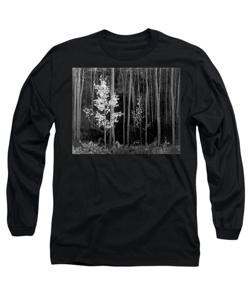 Aspens Northern New Mexico Long Sleeve T-Shirt by Ansel Adams