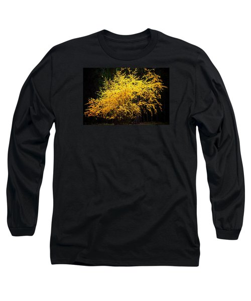 Long Sleeve T-Shirt featuring the photograph Autumn Colors 4 by Newel Hunter