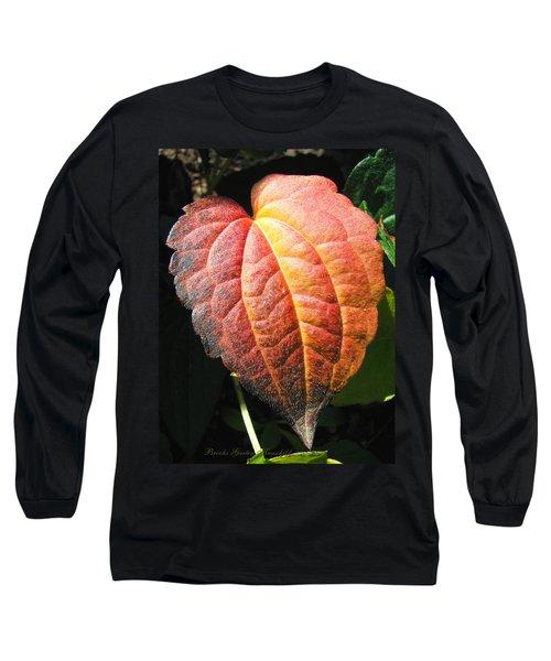 Long Sleeve T-Shirt featuring the photograph Autumn Leaf Macro by Brooks Garten Hauschild
