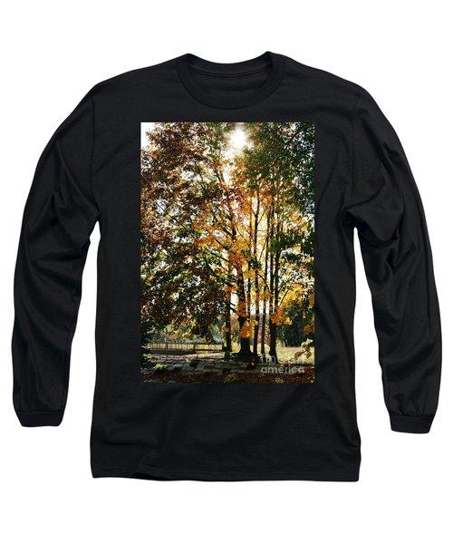 Autumn Light Long Sleeve T-Shirt by Barbara Bardzik