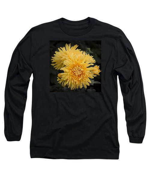 Long Sleeve T-Shirt featuring the photograph Autumn Mums by Julie Palencia