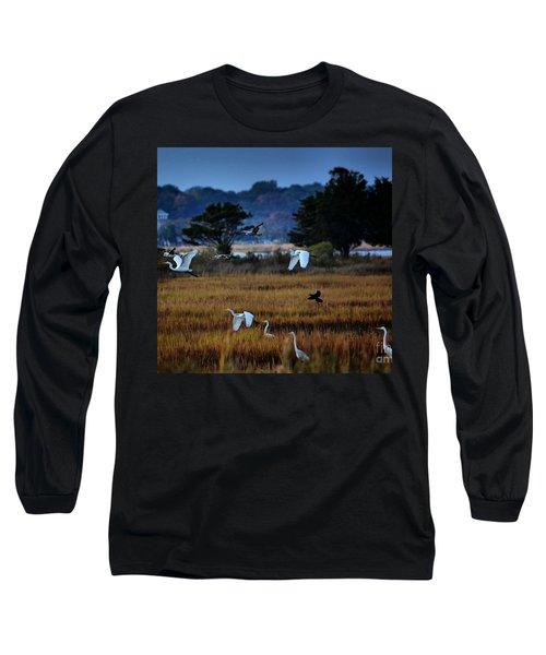 Aviary Convention Long Sleeve T-Shirt by Robert McCubbin