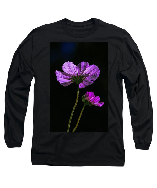 Backlit Blossoms Long Sleeve T-Shirt