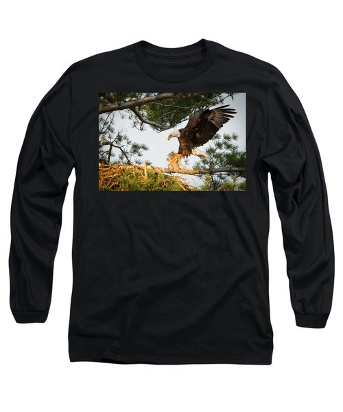 Bald Eagle Building Nest Long Sleeve T-Shirt by Everet Regal