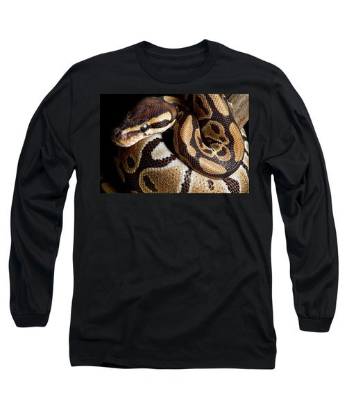 Ball Python Python Regius Long Sleeve T-Shirt by David Kenny
