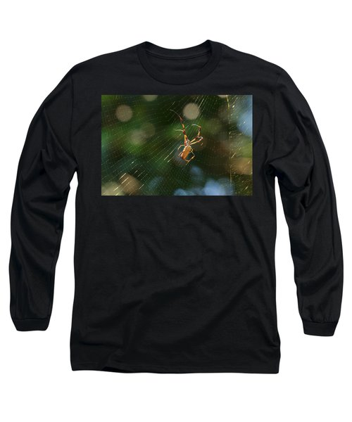 Banana Spider In Web Long Sleeve T-Shirt