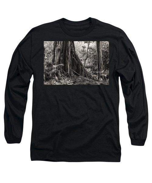 Strangler Fig And Cypress Tree Long Sleeve T-Shirt