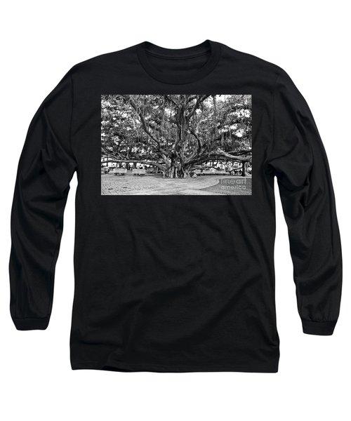 Banyan Tree Long Sleeve T-Shirt by Scott Pellegrin