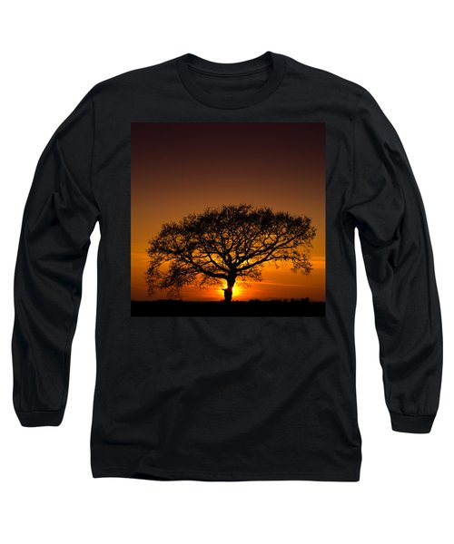 Baobab Long Sleeve T-Shirt by Davorin Mance