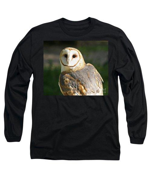 Barn Owl In Bright Sun Long Sleeve T-Shirt