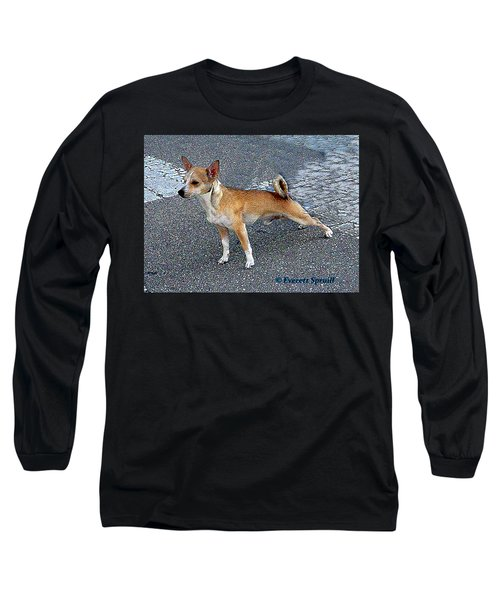 Basenji 2 Long Sleeve T-Shirt