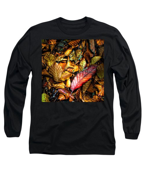Beautiful Fall Color Long Sleeve T-Shirt by Meirion Matthias
