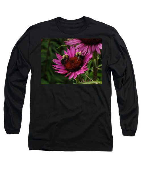 Long Sleeve T-Shirt featuring the photograph Beelievers by Lingfai Leung
