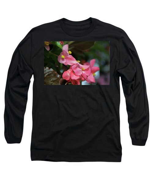 Begonia Beauty Long Sleeve T-Shirt by Ed  Riche