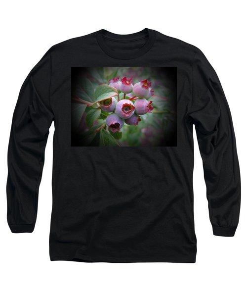 Berry Unripe Long Sleeve T-Shirt
