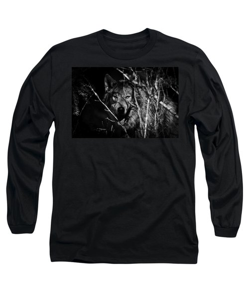 Beware The Woods Long Sleeve T-Shirt by Wes and Dotty Weber