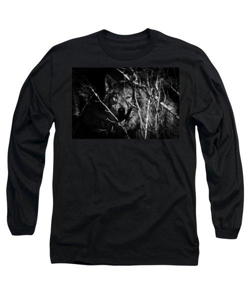 Beware The Woods Long Sleeve T-Shirt
