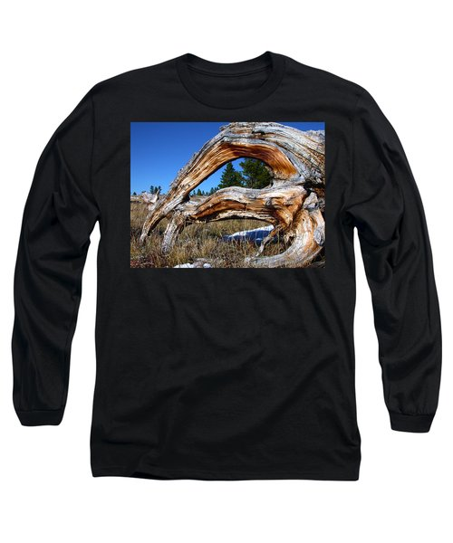 Beyond Our Roots Long Sleeve T-Shirt