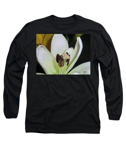 Beyond Perfection Long Sleeve T-Shirt