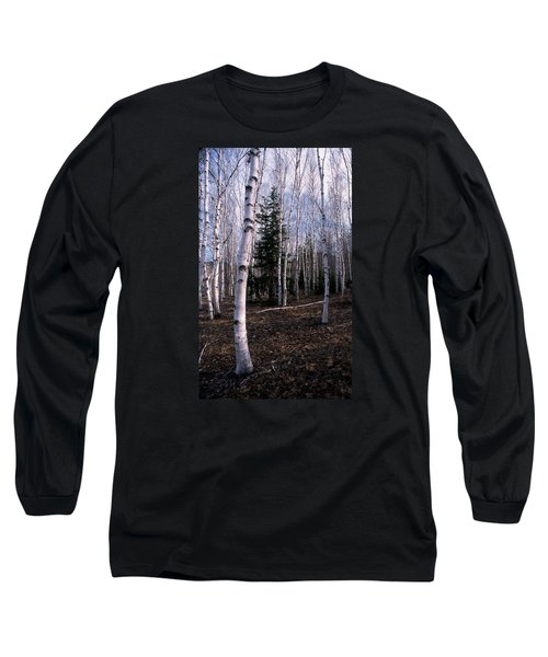 Birches Long Sleeve T-Shirt by Skip Willits