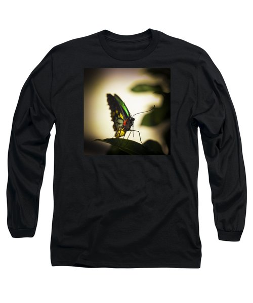 Birdwing Butterfly Long Sleeve T-Shirt by Bradley R Youngberg