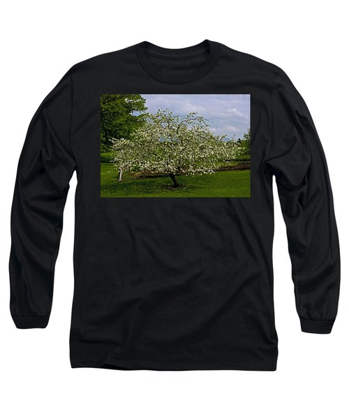 Long Sleeve T-Shirt featuring the painting Birth Of Apples by John Haldane